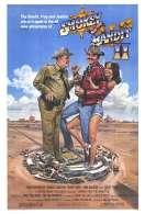 Affiche du film Tu Fais Pas le Poids Sherif