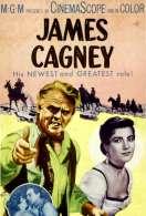 Affiche du film La Loi de la Prairie