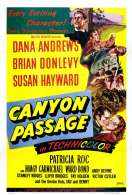 Affiche du film Le Passage du Canyon