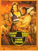 La Megere Apprivoisee, le film