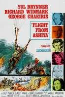 Les Trois Soldats de l'aventure, le film