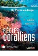 Affiche du film R�cifs coralliens