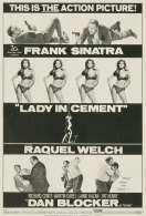 Affiche du film La Femme en Ciment