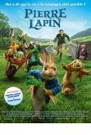 Affiche du film Pierre Lapin