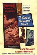 Affiche du film La peur au ventre
