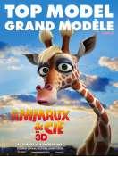 Affiche du film Animaux et Cie