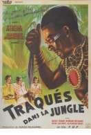 Traques dans la Jungle