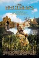 Affiche du film Deux fr�res