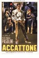 Affiche du film Accatone