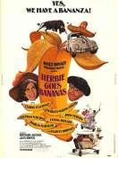 Affiche du film La coccinelle a mexico