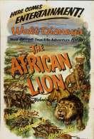 Affiche du film Lions d'afrique