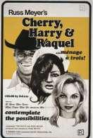 Affiche du film Cherry, Harry et Raquel