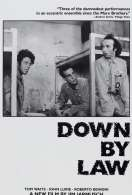 Affiche du film Down by law