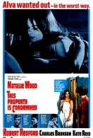 Affiche du film Propri�t� interdite