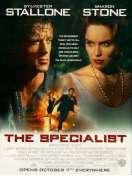 Affiche du film L'expert