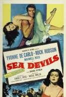 Affiche du film La belle espionne