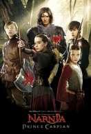 Affiche du film Le Monde de Narnia : chapitre 2 - Prince Caspian