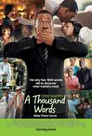 Affiche du film A Thousand Words