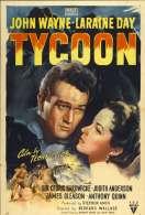 Affiche du film Taikoun