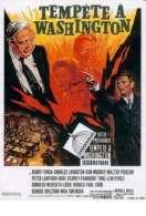 Tempête à Washington, le film