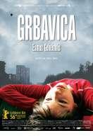 Sarajevo, mon amour, le film