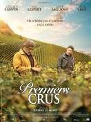 Affiche du film Premiers crus