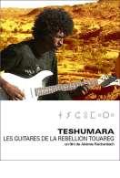 Teshumara, les guitares de la rébellion touareg, le film
