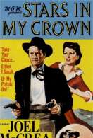 Affiche du film Stars in my crown