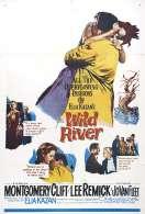 Affiche du film Le fleuve sauvage