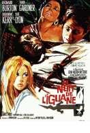 La nuit de l'iguane, le film