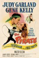 Affiche du film Le pirate