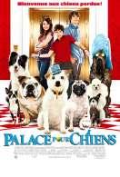 Affiche du film Palace pour chiens
