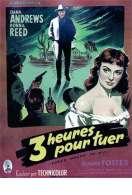 Affiche du film Trois heures pour tuer