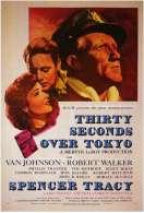 Affiche du film Trente Secondes Sur Tokyo