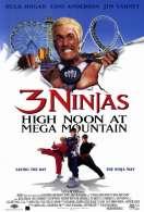 Affiche du film Les 3 Ninjas se Dechainent