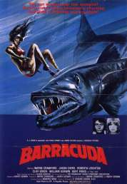Affiche du film Barracuda