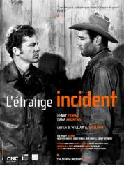 Affiche du film L'étrange incident