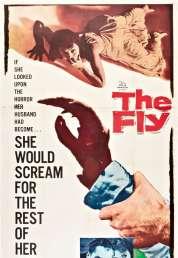 L'affiche du film La mouche noire