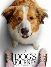 Affiche du film A Dog's Journey