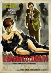 Affiche du film Le Cocu Magnifique