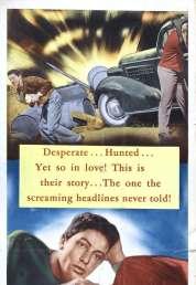 Affiche du film Les amants de la nuit