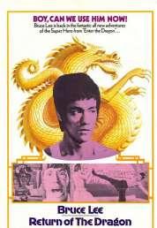 L'affiche du film La fureur du dragon