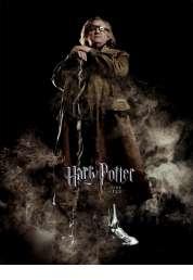 Affiche du film Harry potter et la coupe de feu