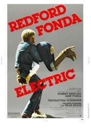 Affiche du film Le cavalier électrique