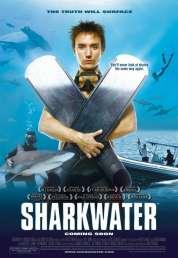Affiche du film Les Seigneurs de la mer