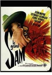 Affiche du film Le Grand Sam