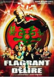 Affiche du film Flagrant délire