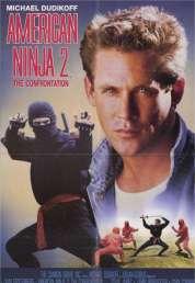 Affiche du film Le Ninja Blanc
