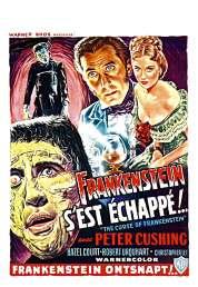 Affiche du film Frankenstein s'est échappé