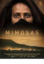 Mimosas, la voie de l\'Atlas